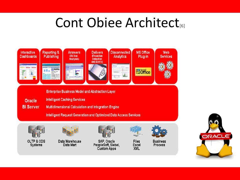 Cont Obiee Architect [6]