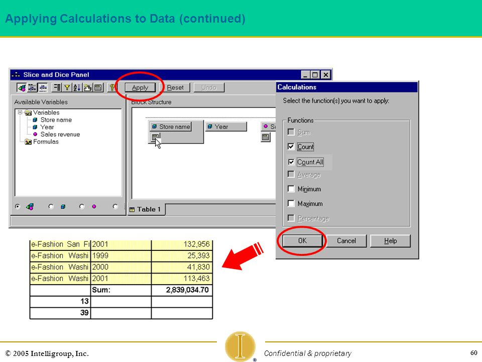 60 © 2005 Intelligroup, Inc. Confidential & proprietary Applying Calculations to Data (continued)