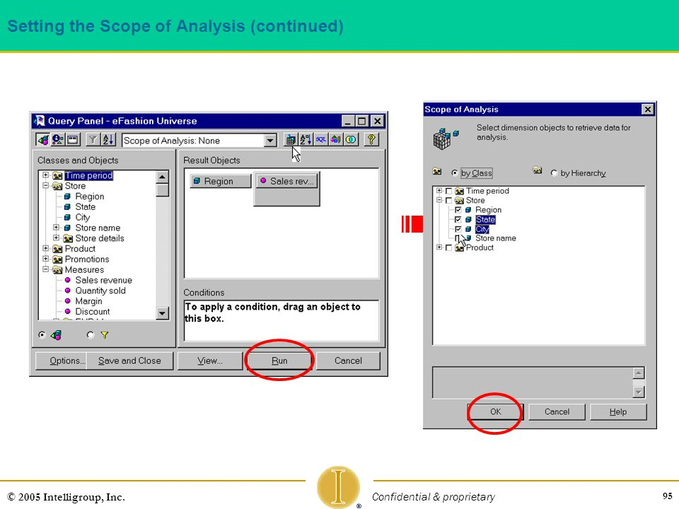 95 © 2005 Intelligroup, Inc. Confidential & proprietary Setting the Scope of Analysis (continued)