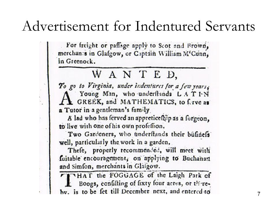 7 Advertisement for Indentured Servants