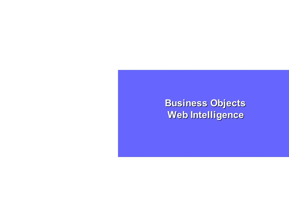Business Objects Web Intelligence Business Objects Web Intelligence