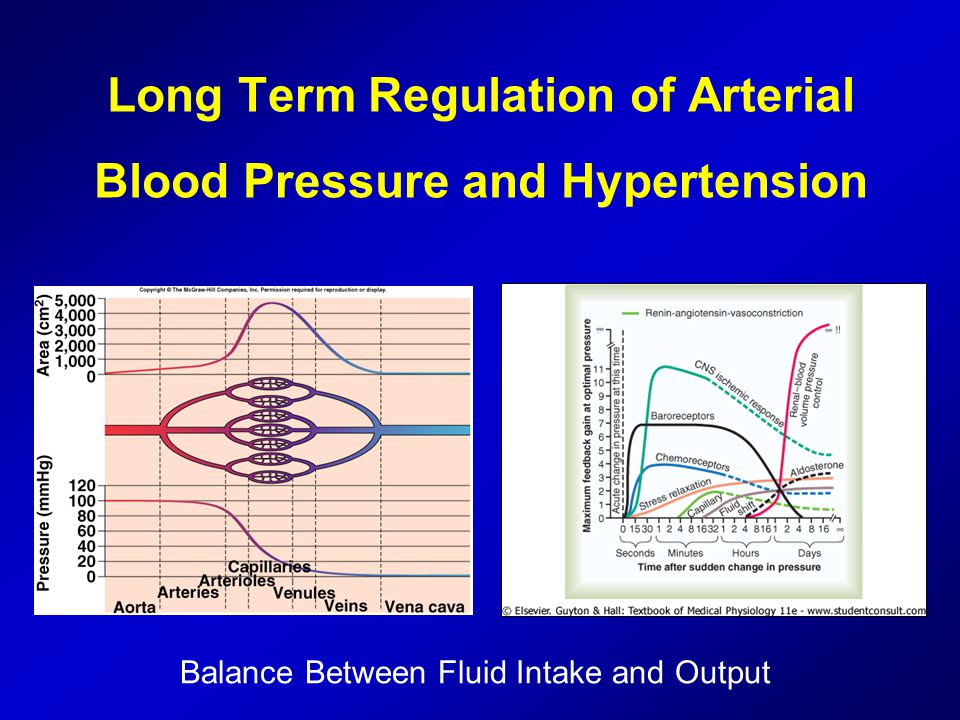 Long Term Regulation of Arterial Blood Pressure and Hypertension Balance Between Fluid Intake and Output