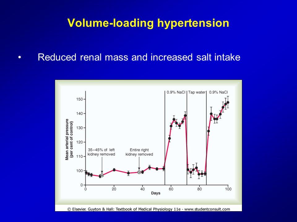 Volume-loading hypertension Reduced renal mass and increased salt intake