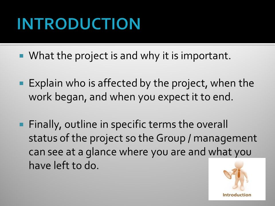  What the project is and why it is important.