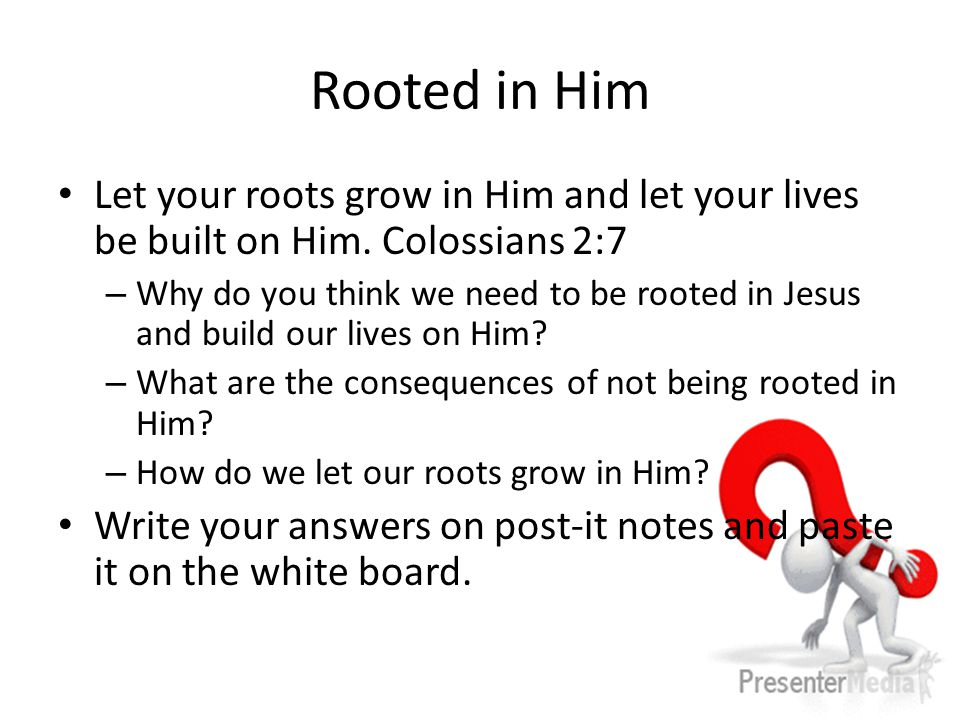 Rooted in Him Let your roots grow in Him and let your lives be built on Him.
