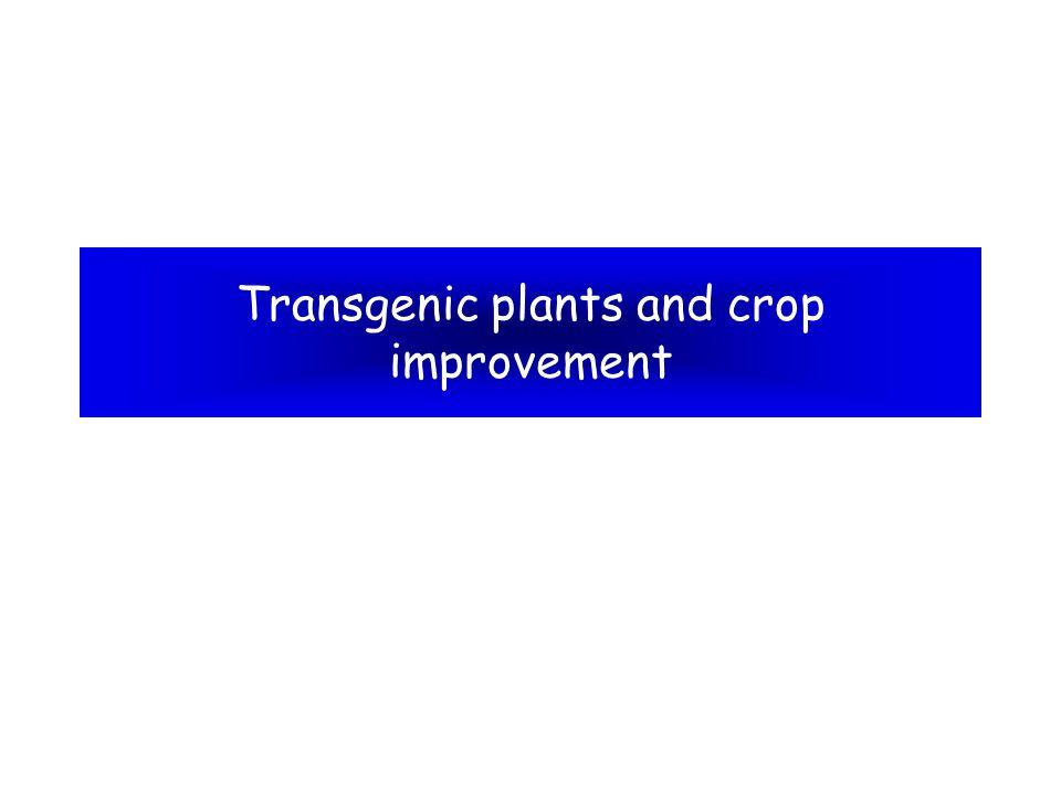 Transgenic plants and crop improvement