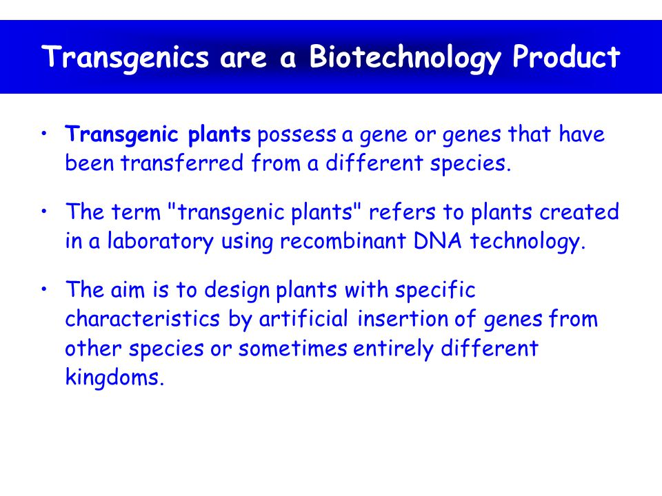 Transgenic plants with beneficial traits Stress tolerance –Withstand biotic and abiotic stress Biotic stress –Attacks by insect pests, viruses, bacteria, fungi etc.