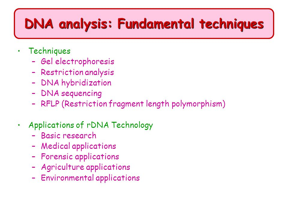 DNA analysis: Fundamental techniques Techniques –Gel electrophoresis –Restriction analysis –DNA hybridization –DNA sequencing –RFLP (Restriction fragm