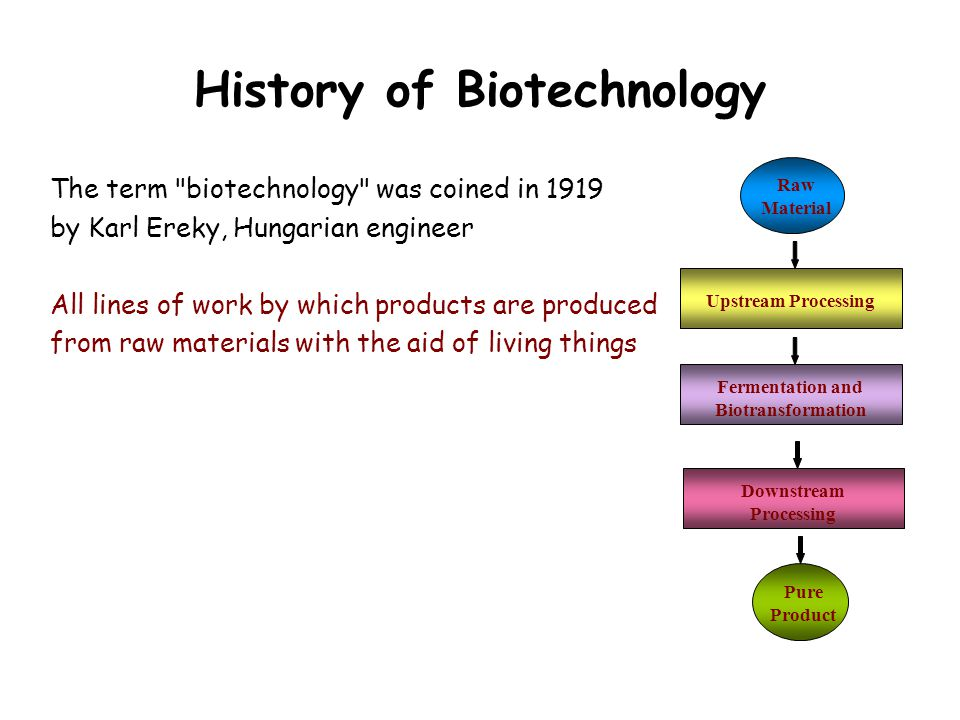 History of Biotechnology The term