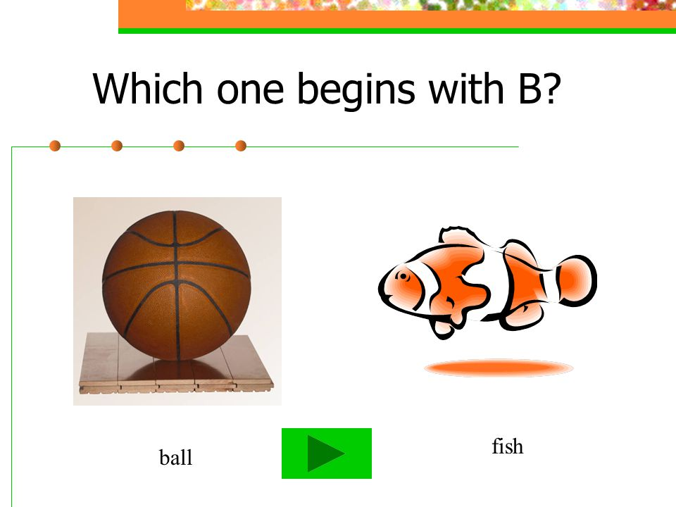 Which one begins with B bus frog