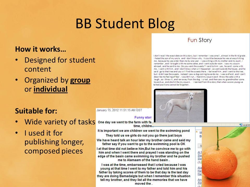 BB Student Blog How it works… Designed for student content Organized by group or individual Suitable for: Wide variety of tasks I used it for publishing longer, composed pieces