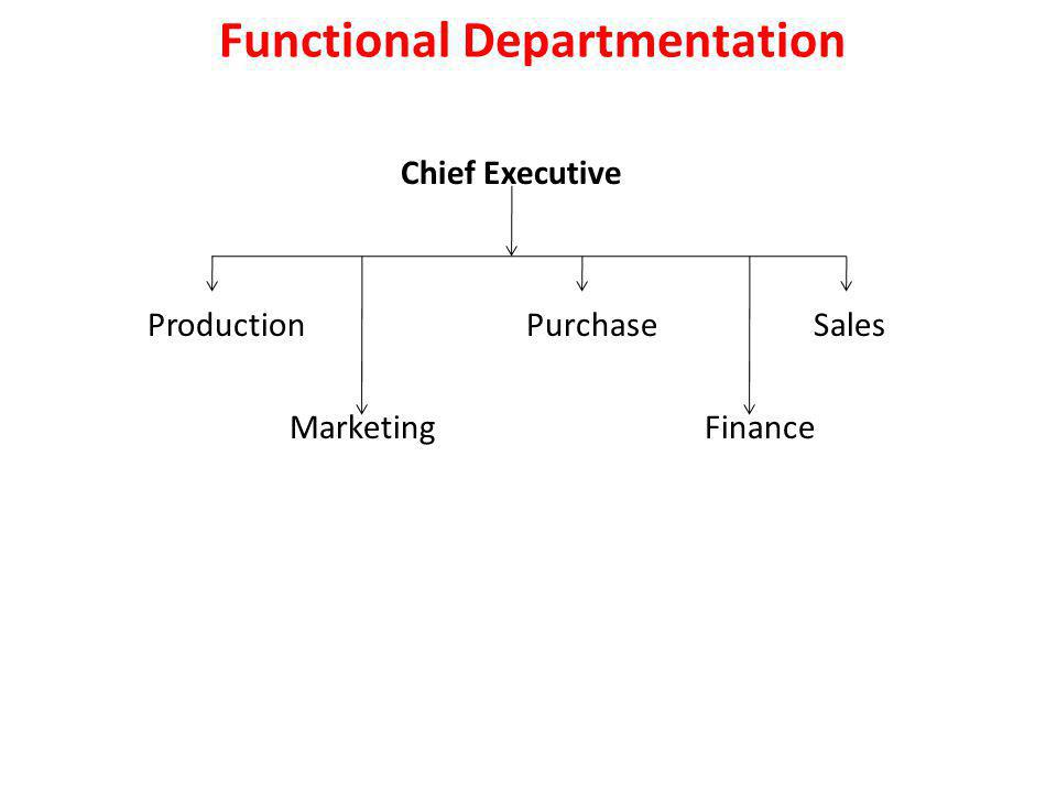 Functional Departmentation Chief Executive Production Purchase Sales Marketing Finance