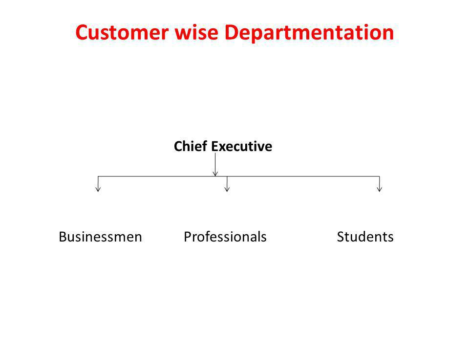 Customer wise Departmentation Chief Executive Businessmen Professionals Students