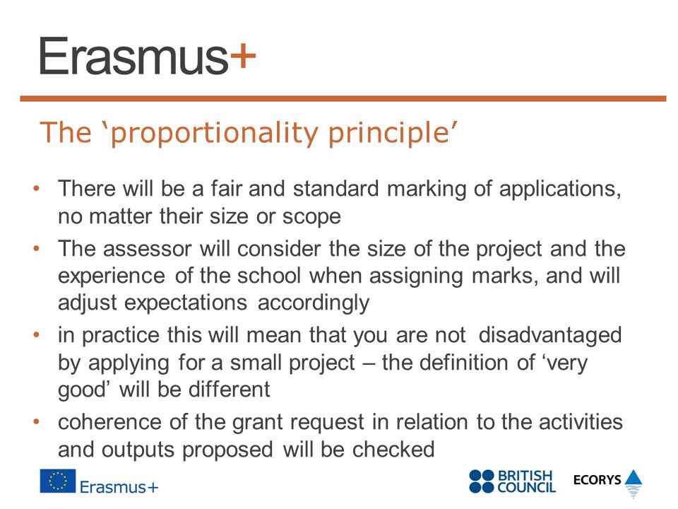 The 'proportionality principle' There will be a fair and standard marking of applications, no matter their size or scope The assessor will consider th