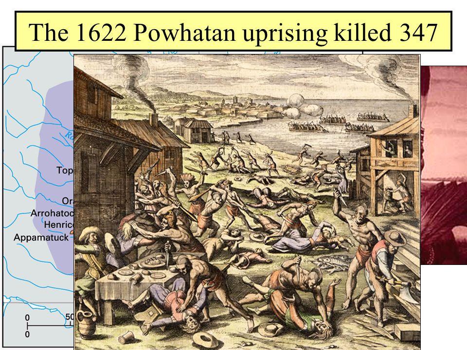 Powhatan Confederacy The 1622 Powhatan uprising killed 347