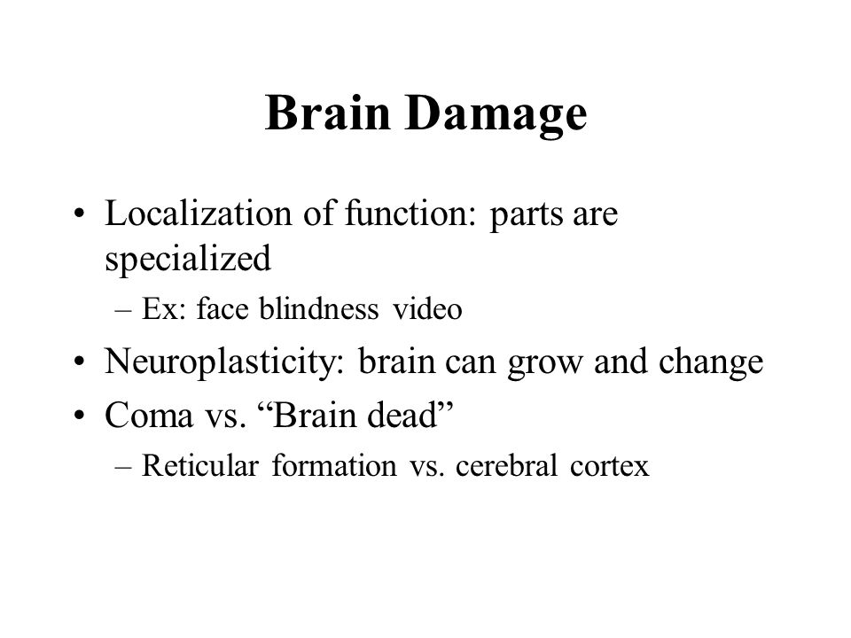 """Brain Damage Localization of function: parts are specialized –Ex: face blindness video Neuroplasticity: brain can grow and change Coma vs. """"Brain dead"""