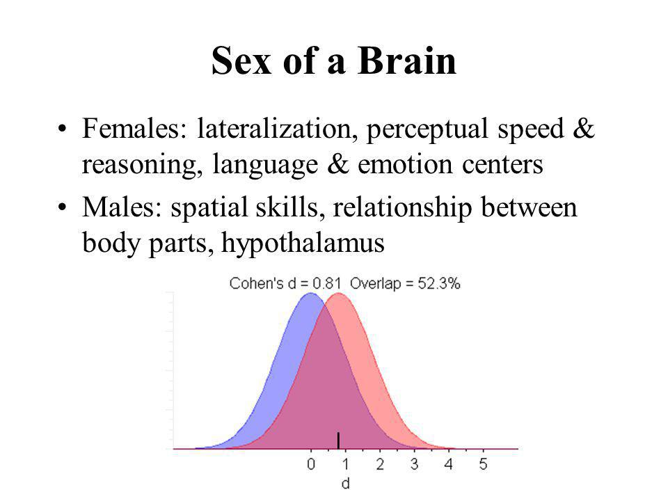 Sex of a Brain Females: lateralization, perceptual speed & reasoning, language & emotion centers Males: spatial skills, relationship between body part