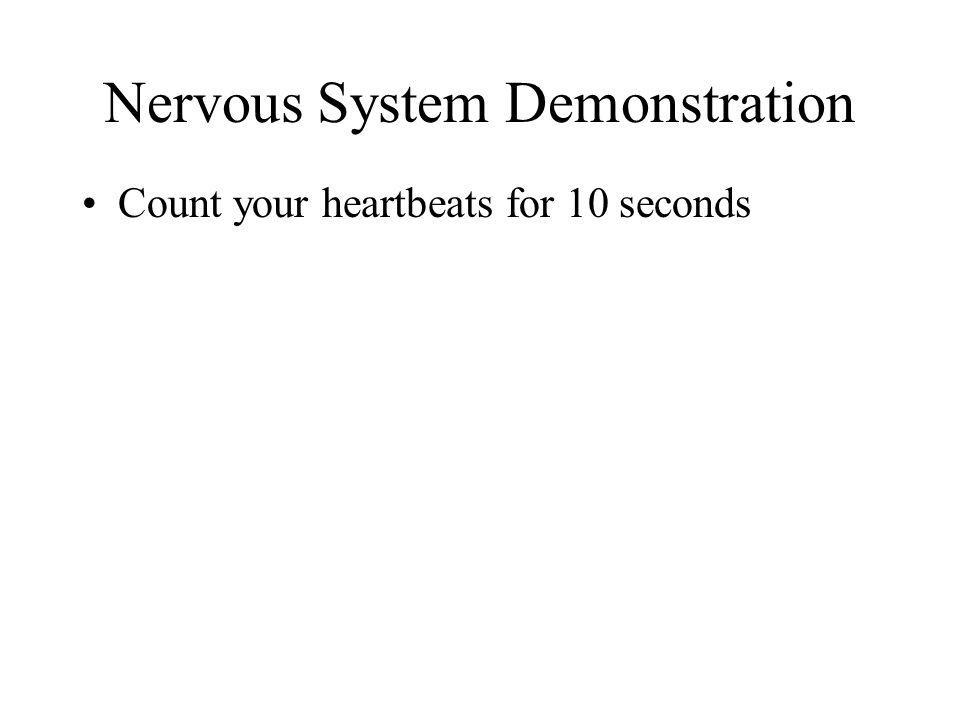 Nervous System Demonstration Count your heartbeats for 10 seconds