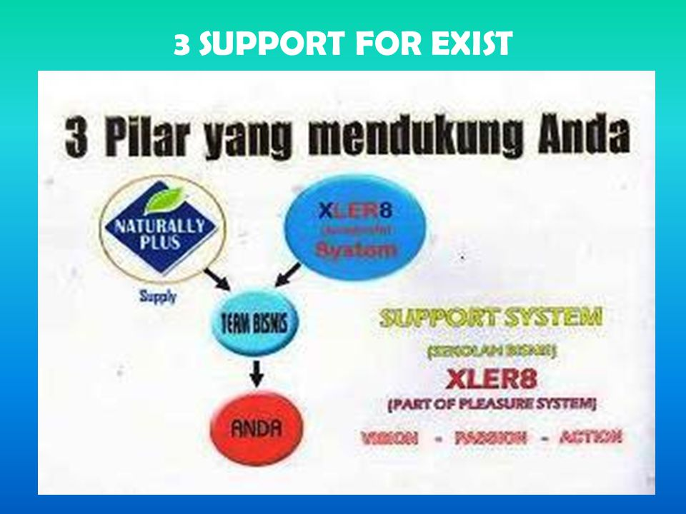3 SUPPORT FOR EXIST