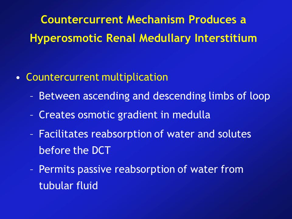 Countercurrent multiplication –Between ascending and descending limbs of loop –Creates osmotic gradient in medulla –Facilitates reabsorption of water