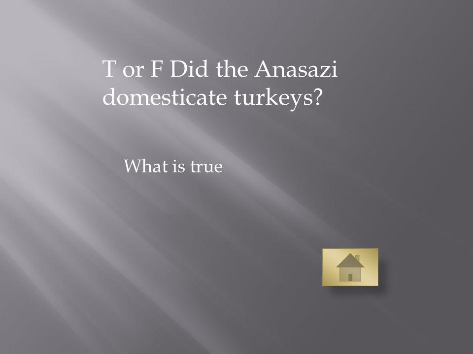 T or F Did the Anasazi domesticate turkeys What is true