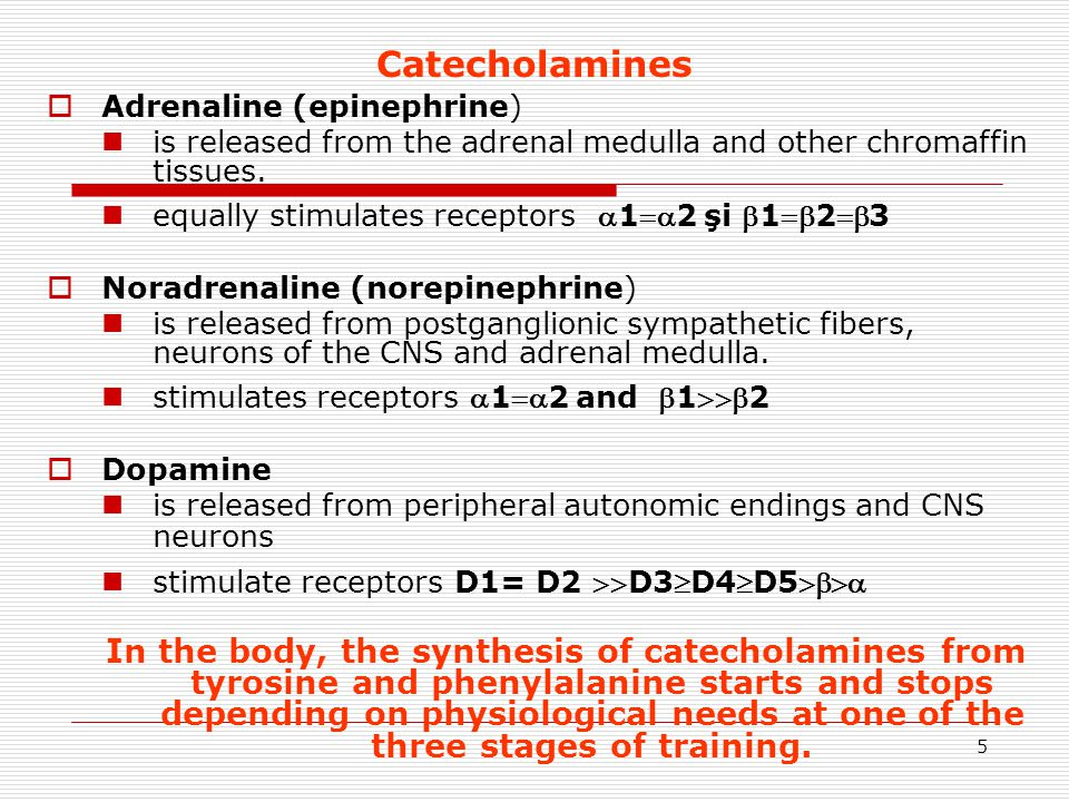 16 PHARMACODYNAMICS OF CATECHOLAMINES vessels DOPAMINE vasodilation in the territory of the kidneys, bowel, decreased peripheral resistance strong positive inotropic effect, increasing cardiac output remain unchanged BP and peripheral pulse  Dopamine is the only catecholamine that may be indicated in cardiogenic shock!!.