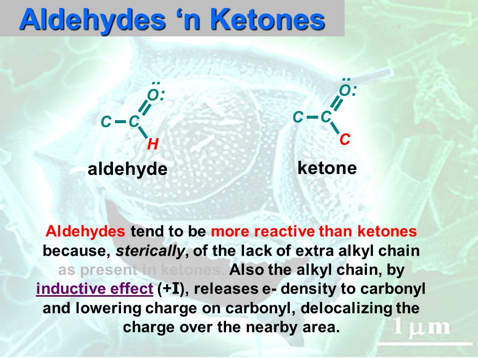 Aldehydes 'n Ketones.. O C C : C O H C : C ketone aldehyde Aldehydes tend to be more reactive than ketones because, sterically, of the lack of extra a