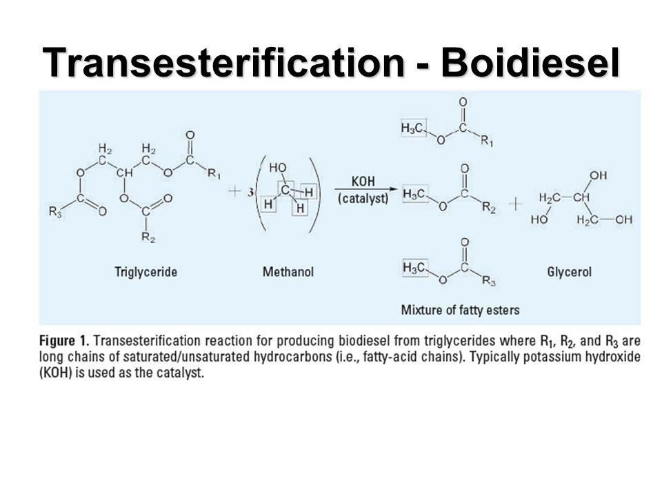 Transesterification - Boidiesel