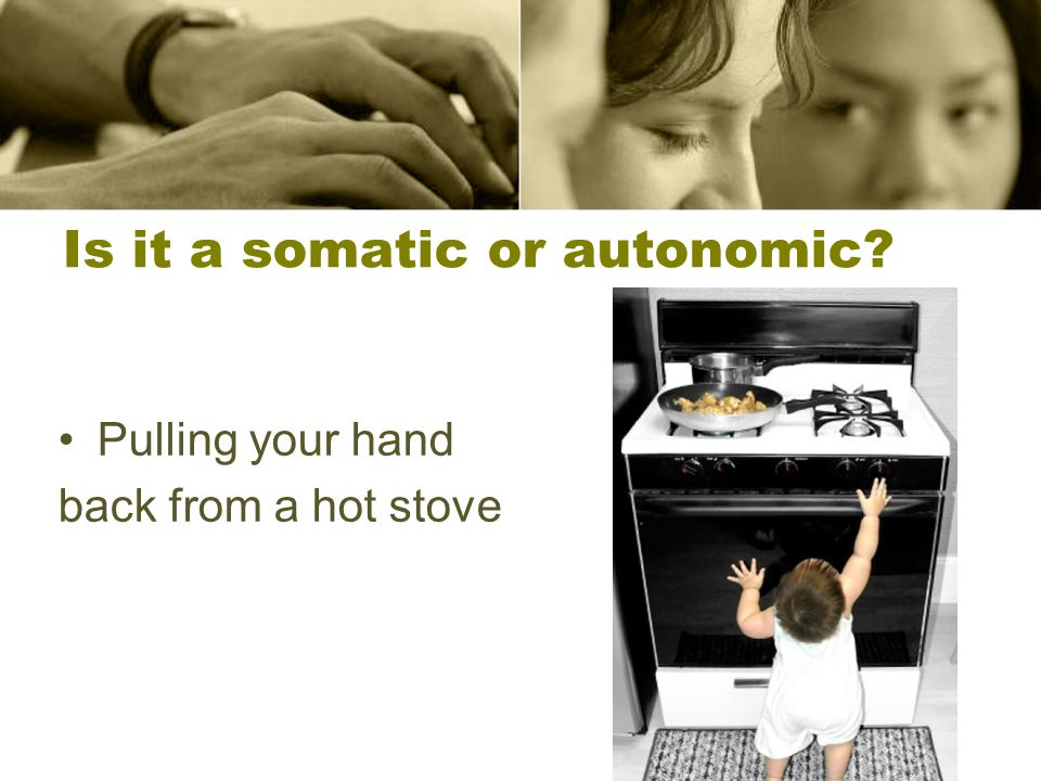 10 Is it a somatic or autonomic Pulling your hand back from a hot stove 10