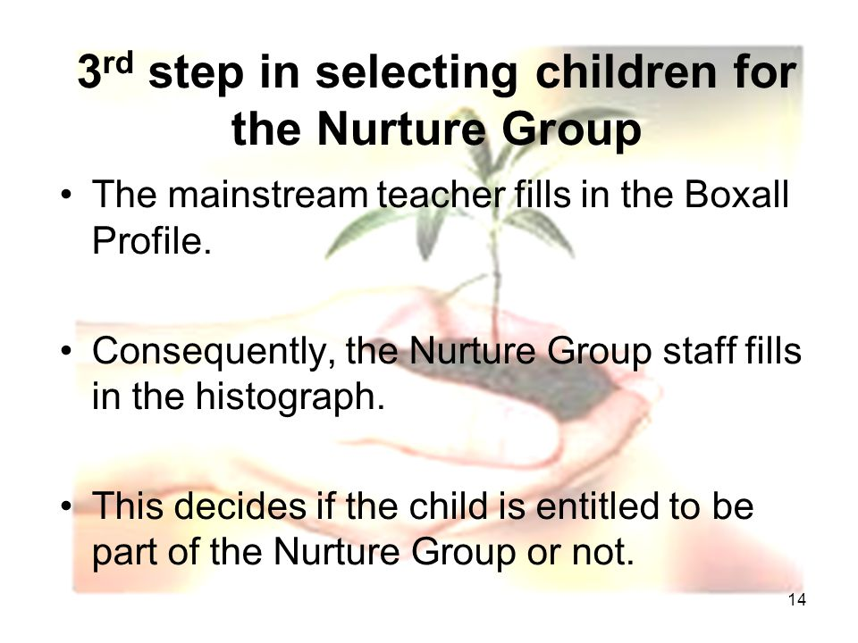 14 3 rd step in selecting children for the Nurture Group The mainstream teacher fills in the Boxall Profile.
