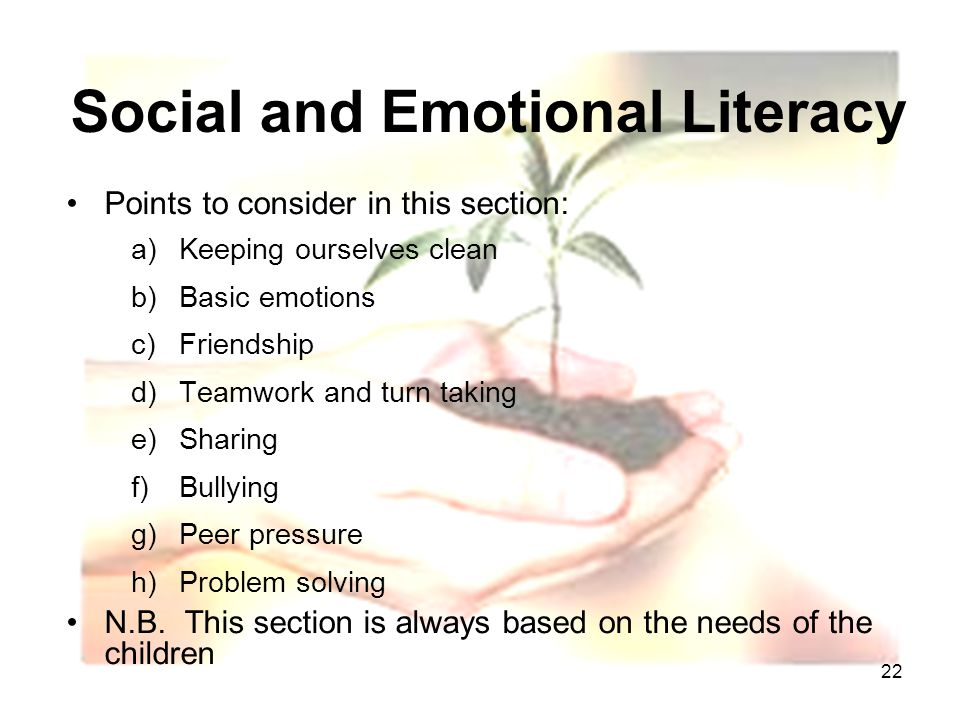 22 Social and Emotional Literacy Points to consider in this section: a)Keeping ourselves clean b)Basic emotions c)Friendship d)Teamwork and turn taking e)Sharing f)Bullying g)Peer pressure h)Problem solving N.B.
