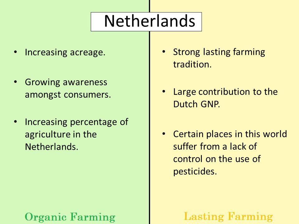 Netherlands Increasing acreage. Growing awareness amongst consumers.