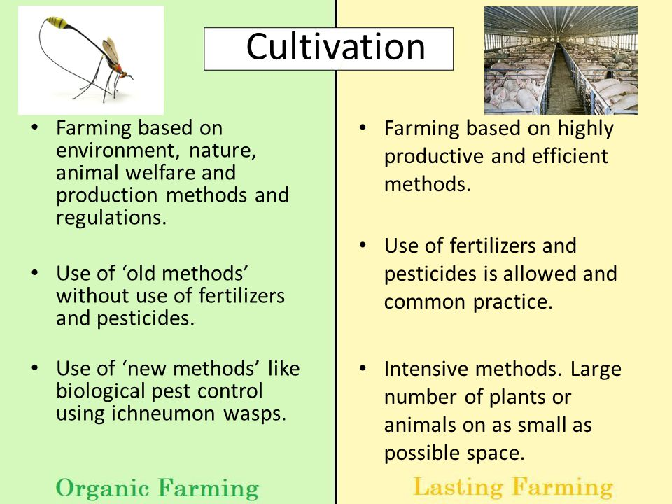 Cultivation Farming based on environment, nature, animal welfare and production methods and regulations.