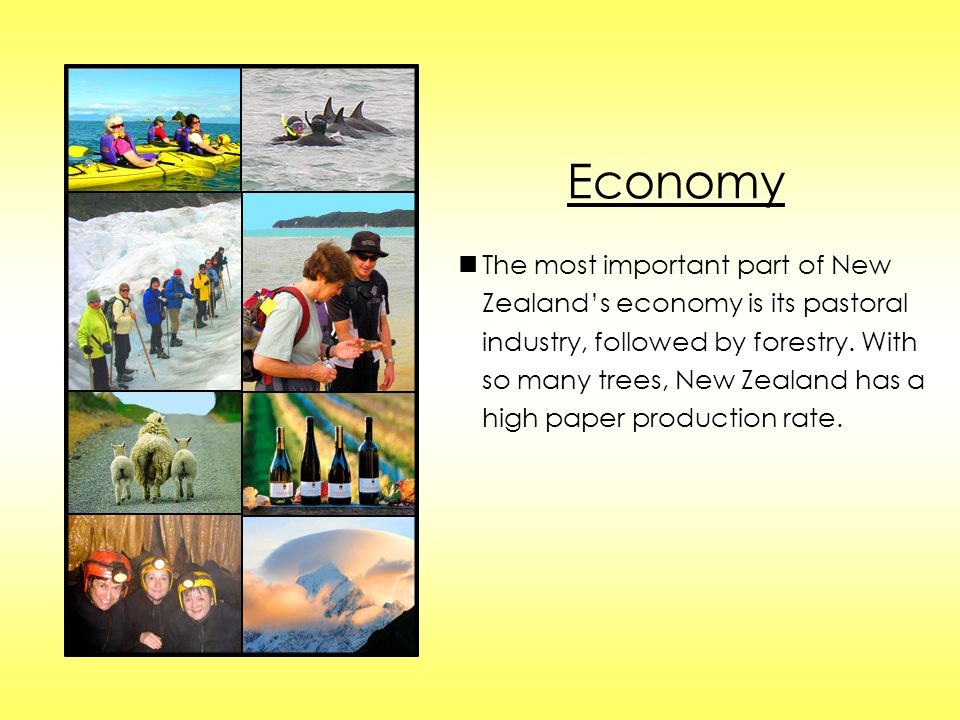 Economy The most important part of New Zealand's economy is its pastoral industry, followed by forestry. With so many trees, New Zealand has a high pa