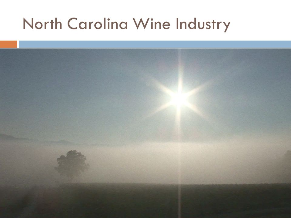 North Carolina Wine Industry