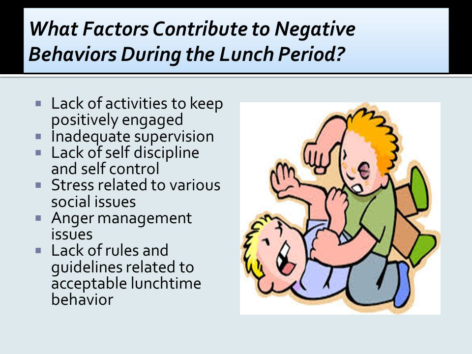  Lack of activities to keep positively engaged  Inadequate supervision  Lack of self discipline and self control  Stress related to various social issues  Anger management issues  Lack of rules and guidelines related to acceptable lunchtime behavior