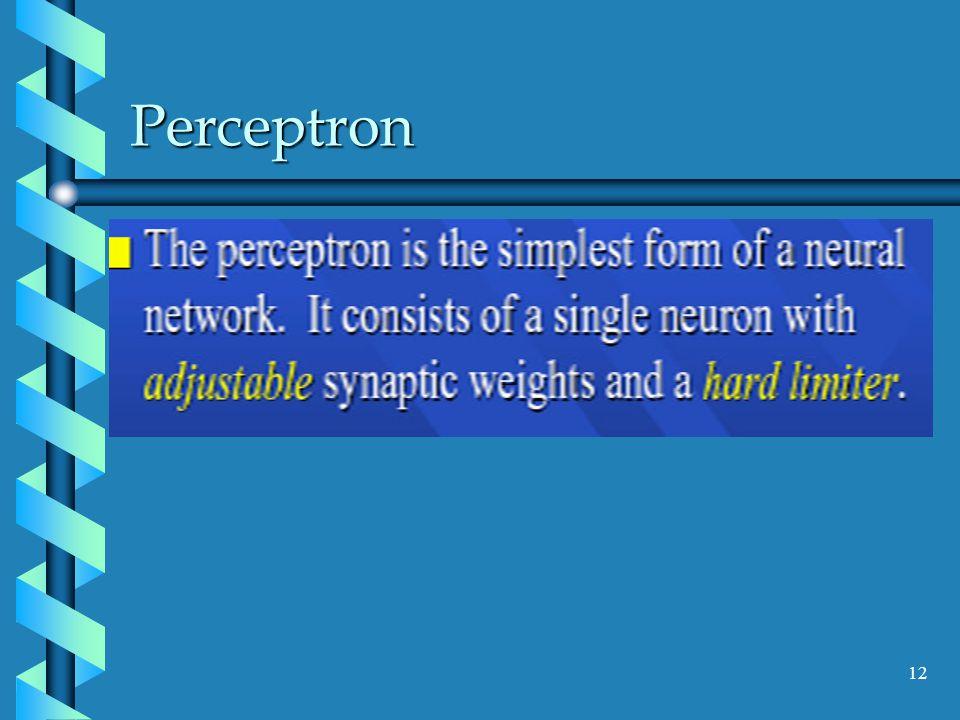 Perceptron 12