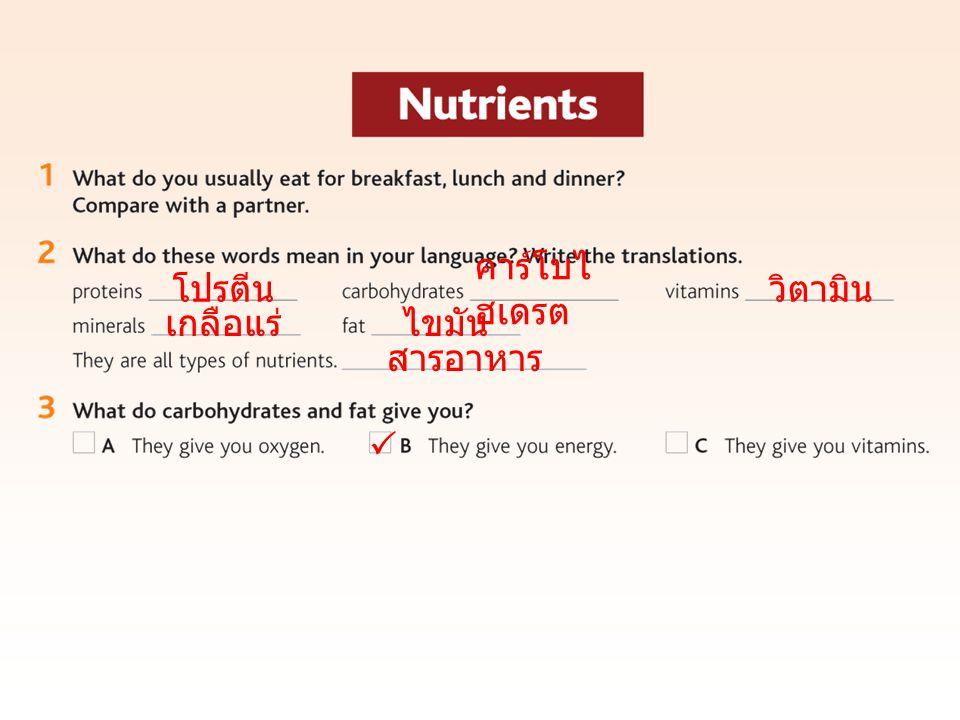 โปรตีน คาร์โบไ ฮเดรต วิตามิน เกลือแร่ไขมัน สารอาหาร 