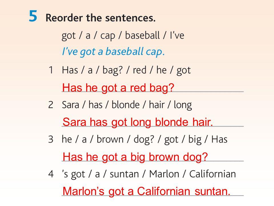 Marlon's got a Californian suntan. Has he got a red bag? Sara has got long blonde hair. Has he got a big brown dog?