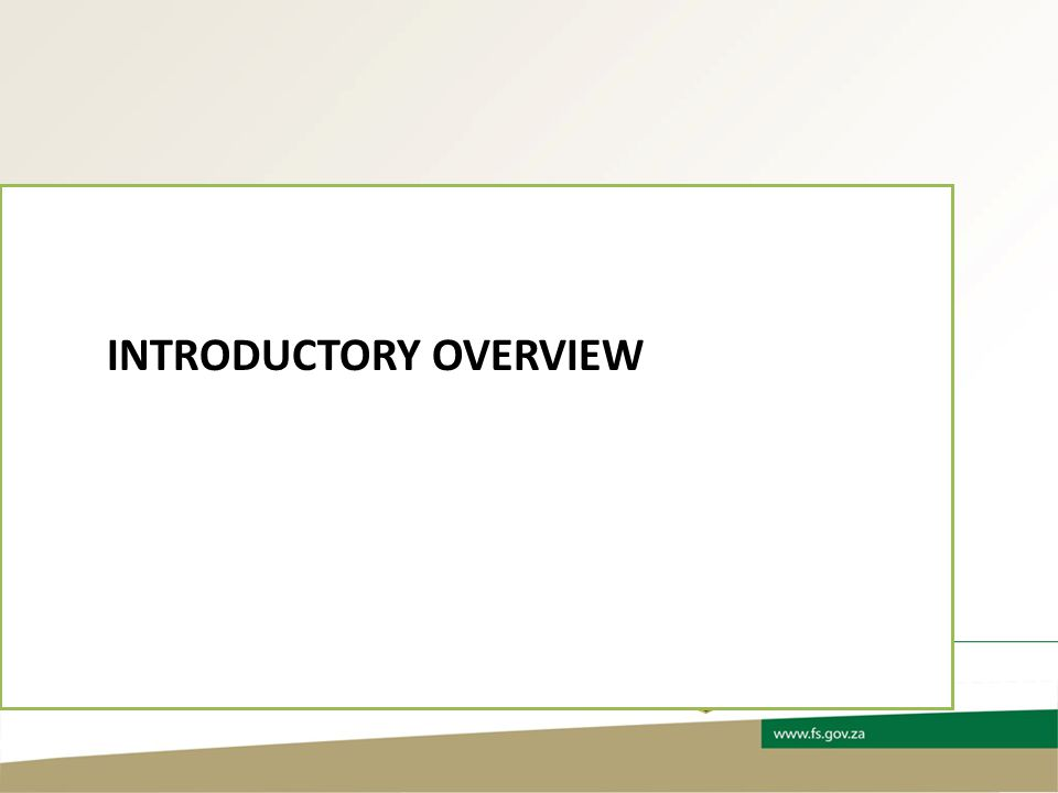 INTRODUCTORY OVERVIEW