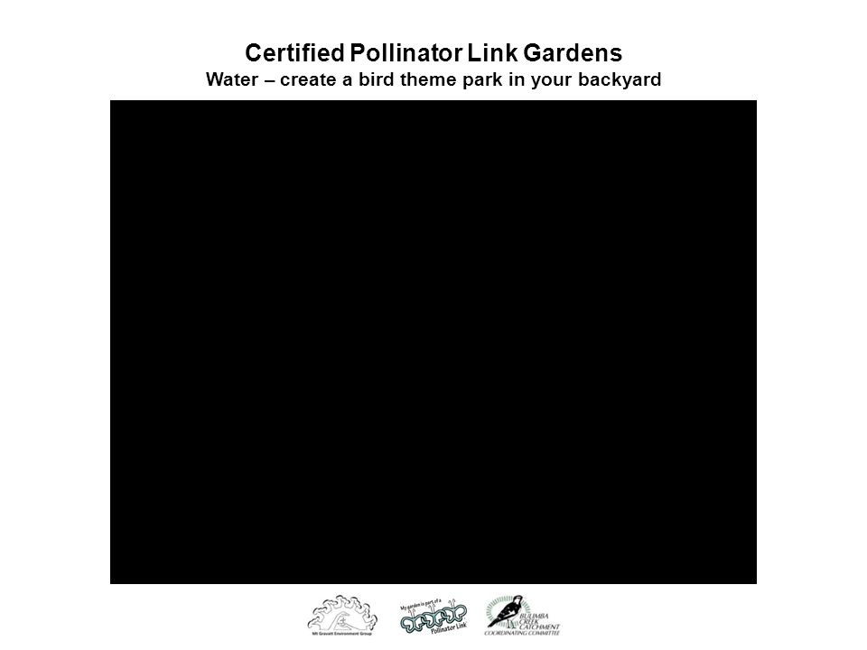 Certified Pollinator Link Gardens Water – create a bird theme park in your backyard