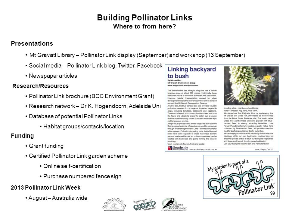 Presentations Mt Gravatt Library – Pollinator Link display (September) and workshop (13 September) Social media – Pollinator Link blog, Twitter, Facebook Newspaper articles Building Pollinator Links Where to from here.
