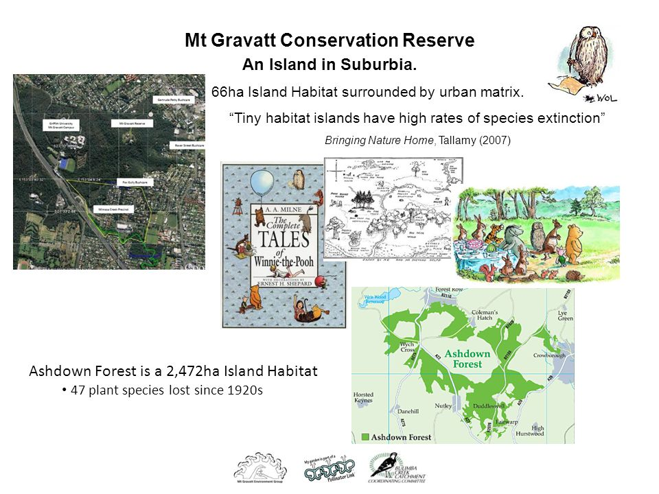 Mt Gravatt Conservation Reserve An Island in Suburbia.