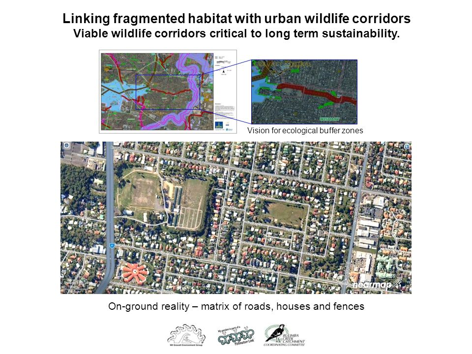 Linking fragmented habitat with urban wildlife corridors Viable wildlife corridors critical to long term sustainability.