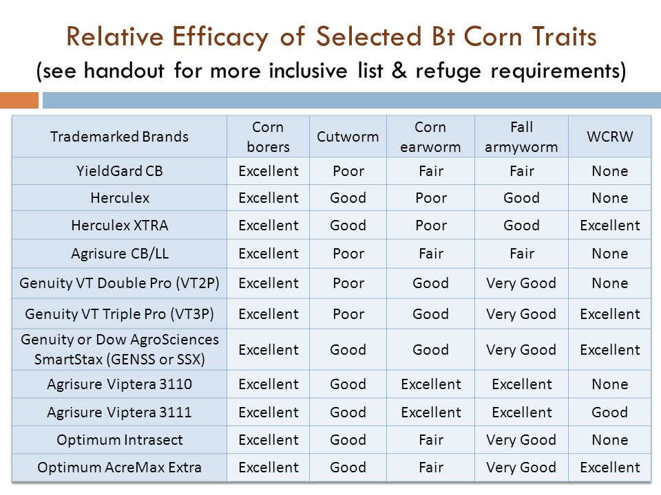 Relative Efficacy of Selected Bt Corn Traits (see handout for more inclusive list & refuge requirements)