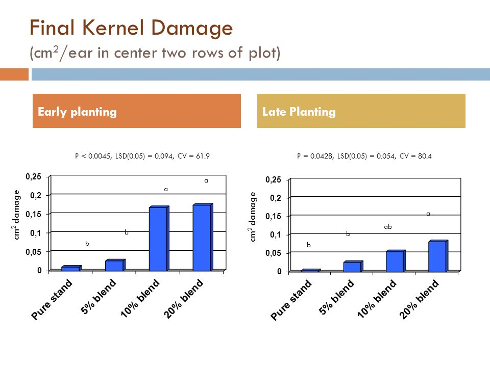 Final Kernel Damage (cm 2 /ear in center two rows of plot) Early plantingLate Planting cm 2 damage P = 0.0428, LSD(0.05) = 0.054, CV = 80.4 P < 0.0045