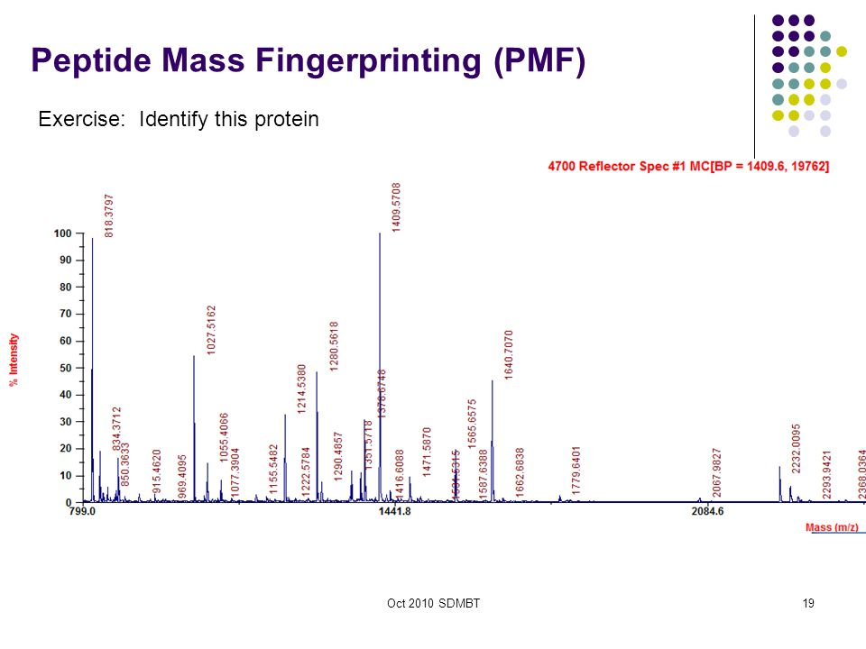 Oct 2010 SDMBT19 Peptide Mass Fingerprinting (PMF) Exercise: Identify this protein