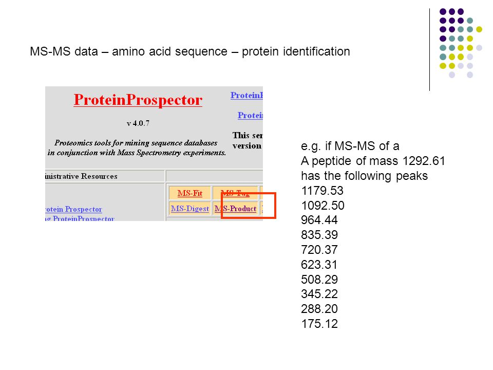MS-MS data – amino acid sequence – protein identification e.g.