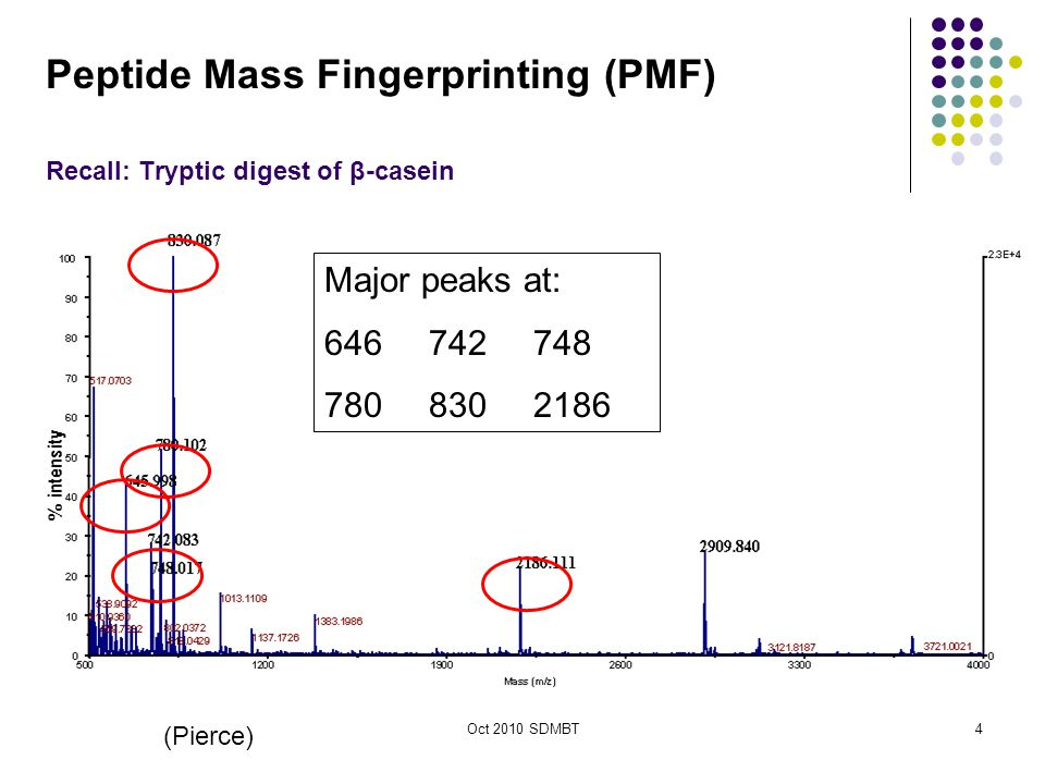 Oct 2010 SDMBT King's College London (Pierce) Major peaks at: 646742748 7808302186 Recall: Tryptic digest of β-casein 4 Peptide Mass Fingerprinting (PMF)