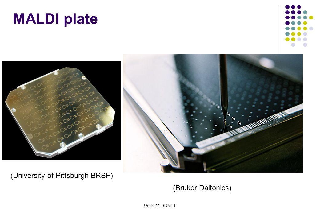 Oct 2011 SDMBT MALDI plate (Bruker Daltonics) (University of Pittsburgh BRSF)